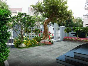 Thiết kế thi công sân vườn đẹp