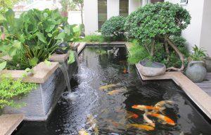 Thiết kế thi công sân vườn đẹp1